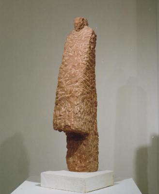Ninguen(9908)