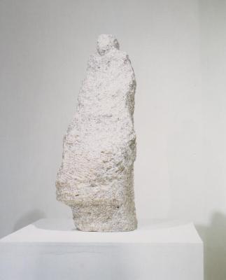 Ninguen(9909)